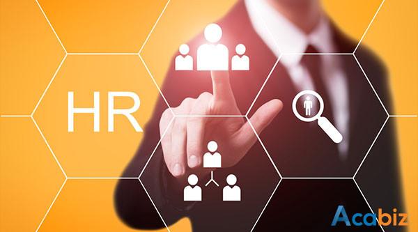 HR là gì? Các vị trí trong ngành HR